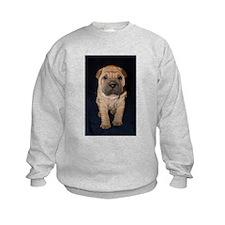 cutepeistand Sweatshirt