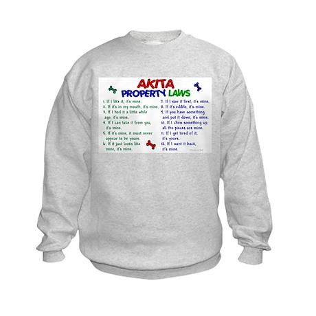 Akita Property Laws 2 Kids Sweatshirt