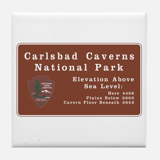 Carlsbad Caverns National Park, New M Tile Coaster