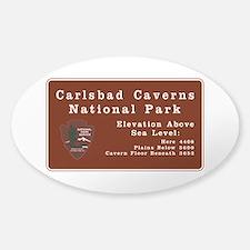 Carlsbad Caverns National Park, New Sticker (Oval)