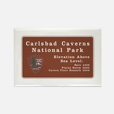 Carlsbad Caverns National Park, N Rectangle Magnet