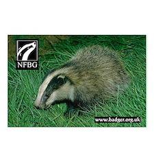 Badgers Forever Badger Postcards (Pack of 8)