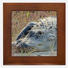 Alligator Lucy Framed Tile