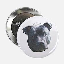 Staffordshire Bull Terrier Button
