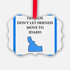 i hate this state Ornament
