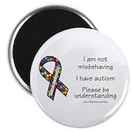 Autism Understanding Magnet