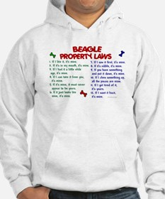Beagle Property Laws 2 Jumper Hoody