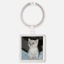 burmese platinum kitten Keychains