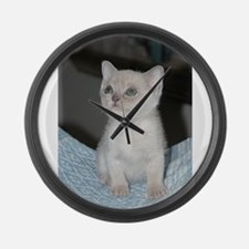 burmese platinum kitten Large Wall Clock