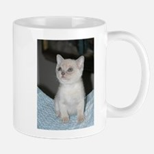 burmese platinum kitten Mugs