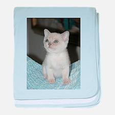 burmese platinum kitten baby blanket