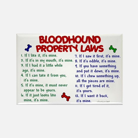 Bloodhound Property Laws 2 Rectangle Magnet