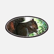 Squirrel Patch
