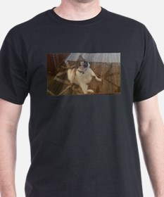 Funny cat striking a pose T-Shirt