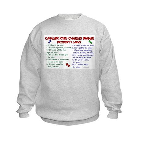 Cavalier King Charles Property Laws 2 Kids Sweatsh