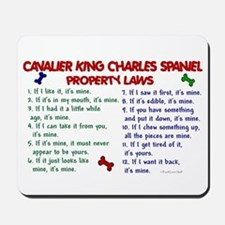 Cavalier King Charles Property Laws 2 Mousepad
