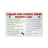 King charles cavalier Single