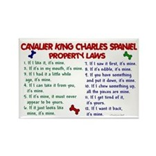 Cavalier King Charles Property Laws 2 Rectangle Ma