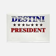 DESTINI for president Rectangle Magnet