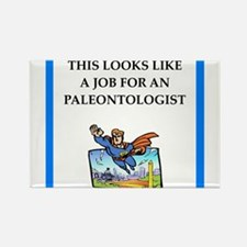 paleontologist Magnets