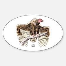 Turkey Vulture Bird Oval Decal