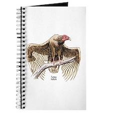 Turkey Vulture Bird Journal