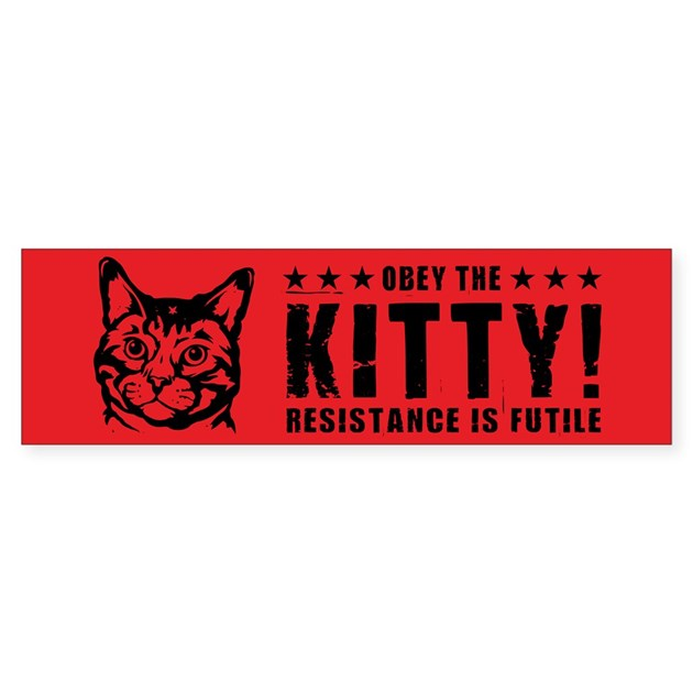 Obey the KITTY! Bumper Bumper Sticker by dogs_of_war