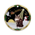 Night Flight & Maine Coon (9) Ornament (Round)