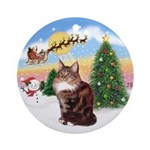 Take Off (A) & Maine Coon cat (9) Ornament (Round)