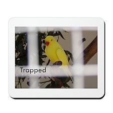 Trapped Mousepad