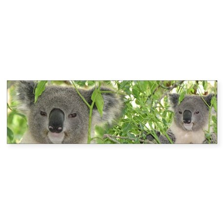 Helaine's Koala Bear Sticker (Bumper)