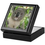 Koala bear Square Keepsake Boxes
