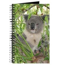 Helaine's Koala Bear Journal