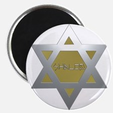 Silver and Gold Jewish Star Magnet