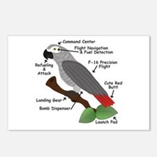 Anatomy of an African Grey Parrot Postcards (Packa
