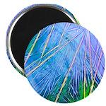 """BLUE CRYSTAL 2.25"""" Magnet (100 pack)"""