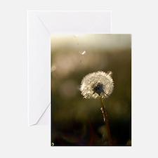 Dandelion Wish Greeting Cards