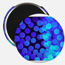 blue dots ii Magnets
