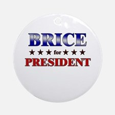 BRICE for president Ornament (Round)