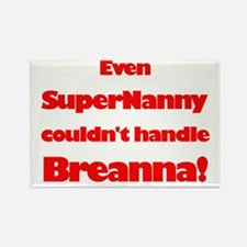 SuperNanny Couldn't Handle Br Rectangle Magnet (10