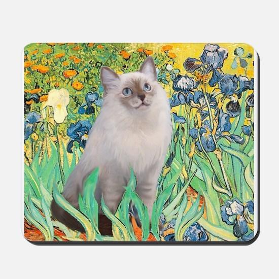 Irises /Ragdoll Mousepad