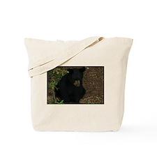 black bears 2007 Tote Bag