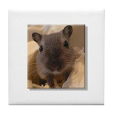 Cute Gerbils Tile Coaster