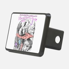 Imagination Reality Hitch Cover