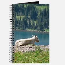 Glacier Mt Goat Journal