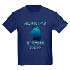 Owned by a Quarter Horse T