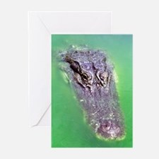 Gator Waiting For You Greeting Cards (Pk of 10