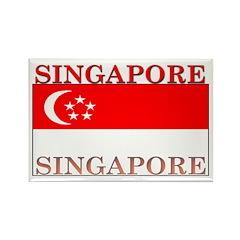 Singapore Flag Rectangle Magnet (10 pack)