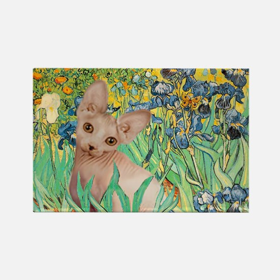 Irises / Sphynx Rectangle Magnet