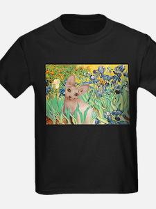 Irises / Sphynx T